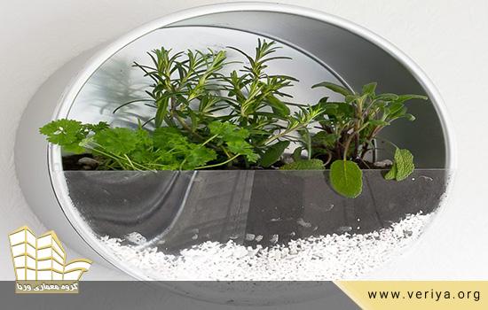 کشت گیاهان دارویی در خانه